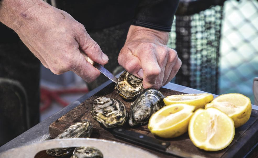 3 Day Seafood Lovers Tour from Adelaide, Adelaide